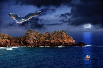 Acrylic Prints Full moon Seagull flight