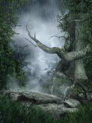 Deszczowa sceneria ze starym drzewem