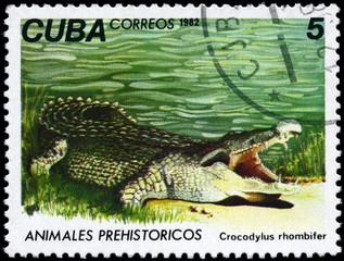CUBA - CIRCA 1982 Crocodile