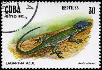 CUBA - CIRCA 1982 Lizard