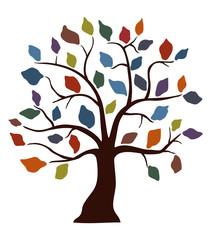colored leaf tree