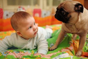 Cute baby girl looking at pug dog. Closeup, shallow DOF