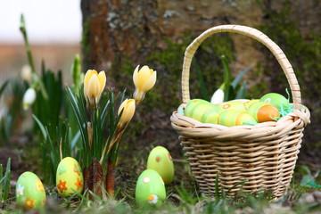 Oster-Körbchen und Ostereier zwischen Frühlingsblumen