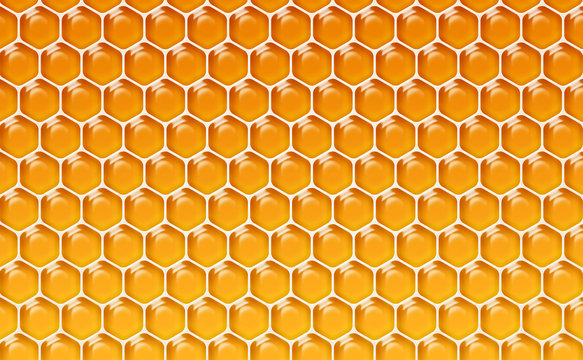 Alvéoles de miel 1