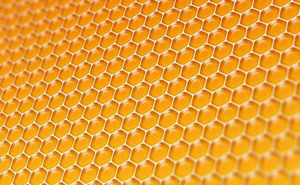 Alvéoles de miel 2