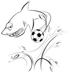 The Magnificent Shark Sports Mascot