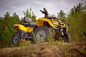 Yellow quad