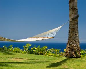 An inviting hammock in an island paradise