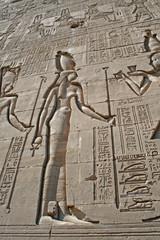 Hieroglyphs at Dendera Temple 13