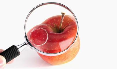 Apfel durch die Lupe