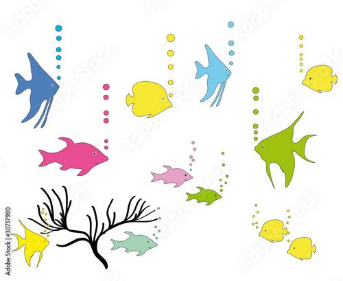 Aquarium mit zierfische stockfotos und lizenzfreie for Aquarium zierfische