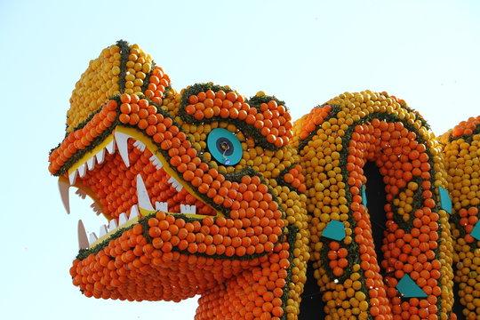 dragon aux agrumes