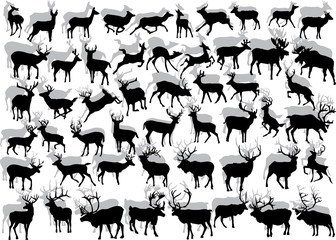 huge collection of deer silhouettes