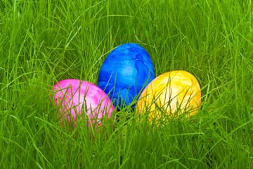farbige Ostereier mit Tautropfen versteckt im Gras