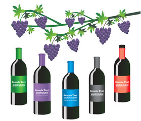 Wine bottle set with grapes