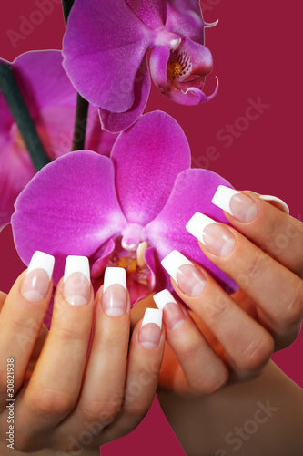 French Nails With Rosa Orchid Stock Photo And Royalty Free Images