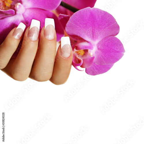 French Nagel Mit Rosa Orchidee Stock Photo And Royalty Free Images