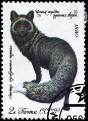 USSR - CIRCA 1980 Fox