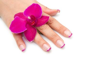 mano di donna con orchidea