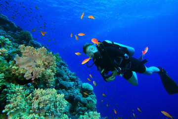 Young Woman Scuba Diving among tropical fish
