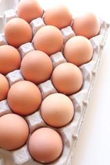 再生紙のトレイと赤卵