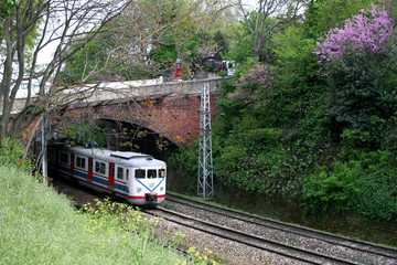 Electric train under bridge