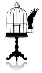 Aluminium Prints Birds in cages Birdcage