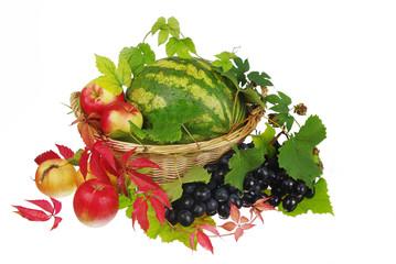 Арбуз, виноград и фрукты в корзине