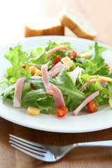 Ham and Cheese Salad