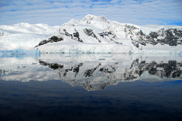 Wall Mural - perfect reflection of antarctica in the ocean