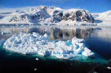 Fototapete - blue sea and  iceberg, antarctica