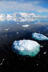 Fototapete - vertical of iceberg in antarctic landscape