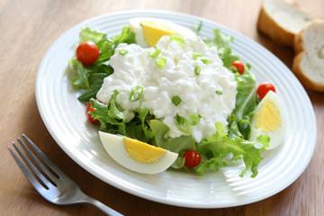 Salad wirth Cottage Cheese