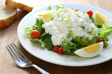 Salad with Egg and Cottage Cheese