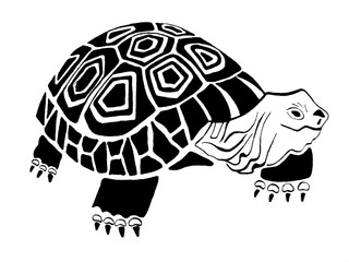 Turtle. Original hand drawing.