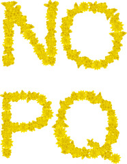 Alphabet of yellow flowers and butterflies-N, Q, O, P.