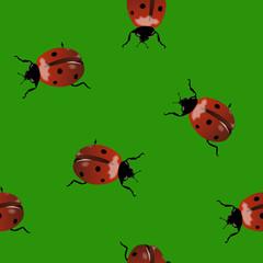 Keuken foto achterwand Lieveheersbeestjes Green seamless background with ladybugs