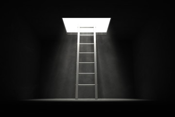 Exit the Dark - Grey Ladder to the Light Wall mural