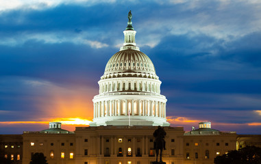 United States Capitol Building Wall mural