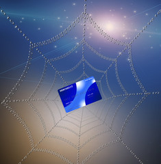 Credit card caught in web