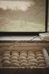 Bread Resting at Bakery Window