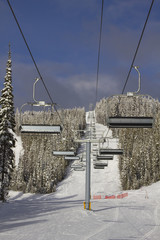 Ski Lift Line portrait