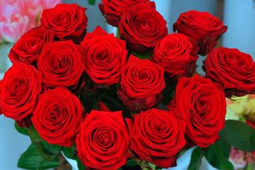 fiori 1256