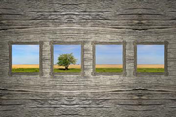 Holzwand mit Fenster und Blick auf Landschaft mit Baum und Wiese