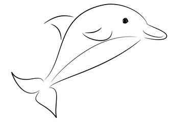 delfino tatuaggio