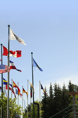 Olympic flags in Calgary in Alberta Canada