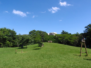 Picnic area of National Park in San Jose, Costa Rica