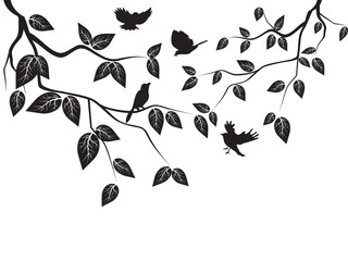 leaves and birds