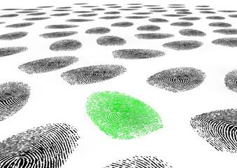 fingerprints_flaeche_02