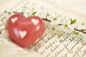 Heart on Diary
